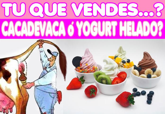 Yogurt Helado Badhu